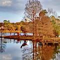 Langan Park Island Reflections by Marian Bell