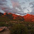 Last Light On Catalina Mountains by Chance Kafka