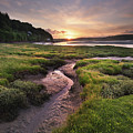 Laugharne Estuary At Sunrise by Elliott Coleman