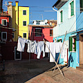 Laundry Day In Burano  by Harriet Feagin