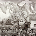Laundry Day In Vintage Sepia by Debra and Dave Vanderlaan