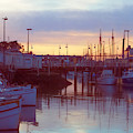Lavender Evening At The Marina by Bonnie Follett