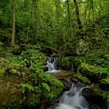 Lee Falls Cascades by Robert J Wagner