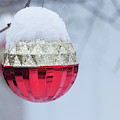 Let It Snow On The Red Christmas Ball - Outside Winter Scene  by Cristina Stefan
