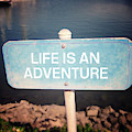 Life Is An Adventure- Sign Art By Linda Woods by Linda Woods