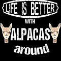 Life Is Better With Alpacas Around by Grace Collett