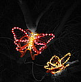 Light In Flight - Selective Coloring by Colleen Cornelius