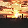 Light Of Arizona by Chance Kafka