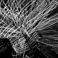Light Swirl by Yulia Kazansky