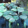 Lily Pond by Anil Nene