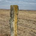 Limestone Fence Post by Sue Smith