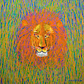Lion In The Grass by David Arrigoni