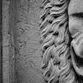Lion Statue Portrait by Nathan Bush