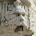 Lion's Head Fountain In Outdoor Plaza  by Steve Estvanik