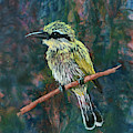 Little Bee Eater by Melissa Peterson