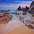 Little Corona Del Mar Beach Vi by Bill Thomas
