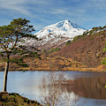 Loch Affric, Scotland by Arterra Picture Library
