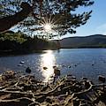 Loch An Eilein, Scotland by Arterra Picture Library