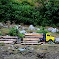 Loggers Loading Tree Trunks Onto Yellow Truck On Mountainside Kaghan Pakistan by Imran Ahmed
