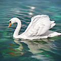 Lone Swan Lake Geneva Switzerland by Carol Japp