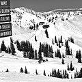 Looking Toward The Collins Chair Black And White by Adam Jewell