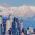 Los Angeles Snow Panorama by Lynn Bauer