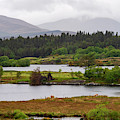 Lough Cloonee  by Bob Phillips