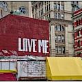Love In New York City  by Harriet Feagin