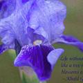 Loving Life - Motivational Flower Art By Omaste Witkowski by Omaste Witkowski