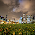 Low Angle Picture Of Downtown Chicago Skyline During Winter Nigh by PorqueNo Studios