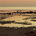 Low Tide Before Sunrise by Sun Travels