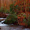 Lower Dunnfield Creek In The Fall by Raymond Salani III