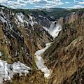 Lower Falls In Yellowstone by Scott Read