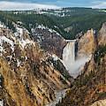 Lower Yellowstone Falls - Horizontal by Matthew Irvin