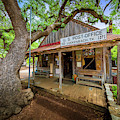 Luckenbach Town by Inge Johnsson