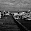 Macmillan Wharf  Provincetown Bw by Susan Candelario