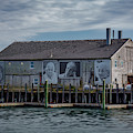 Macmillan Wharf by Susan Candelario