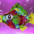 Magikarp Funky Fish by Christine Dekkers