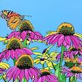Magnificant Monarch by Sonja Jones