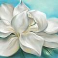 Magnolia Grandiflora Flower On Blue by MM Anderson