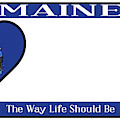 Maine State License Plate by Bigalbaloo Stock
