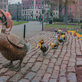 Make Way For Ducklings - Boston Spring  by Joann Vitali
