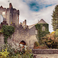 Malahide Castle By Autumn  by Ariadna De Raadt