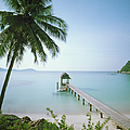 Malaysia, Terengganu State, Pulau by Martin Puddy