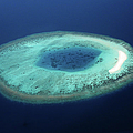 Maldives Coral Islands by Mohamed Abdulla Shafeeg