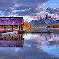 Maligne Lake Pine Clouds And Golden Glow by Adam Jewell
