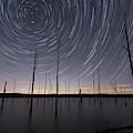 Manasquan Reservoir Star Trails  by Michael Ver Sprill