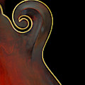 Mandolin Detail by Perry Correll