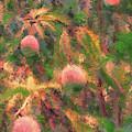 Mango Tree Impression by Jeff Breiman