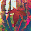 Maple Leaf In Autumn In Abstract Vivid Colors by Debra and Dave Vanderlaan